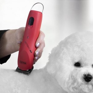 Dog & Veterinary Clippers