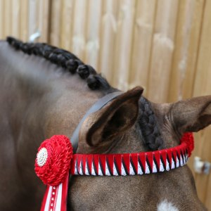Plaiting Essentials