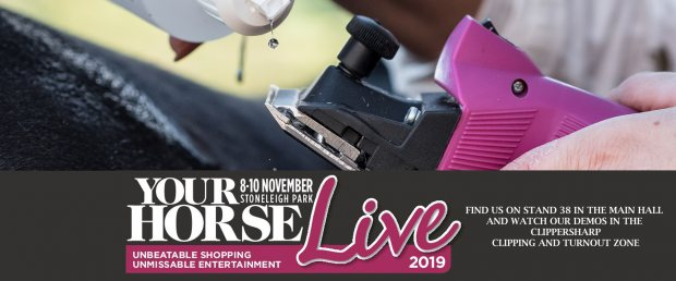 Your Horse Live 2019