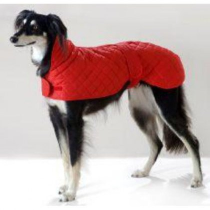 Cosi Pet Greyhound & Whippet Anorak