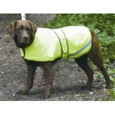 Cosipets Fluorescent Waterproof Dog Coat