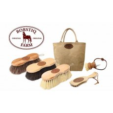 Borstiq Natural Brush Grooming Kit