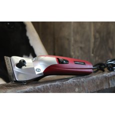 Liveryman Black Beauty Clipper