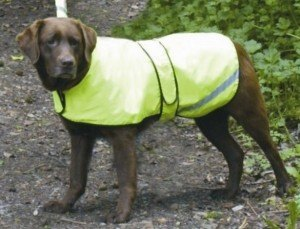 Cosipet Cosipets Fluorescent Waterproof Dog Coat